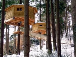 Cabanes Als Arbres for incentives
